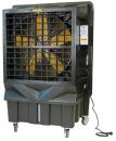Охладитель воздуха Master BC 220 в Казани